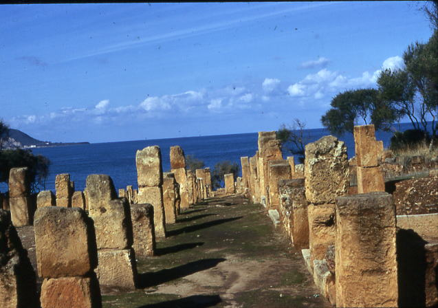 ruines tipaza casbah visite