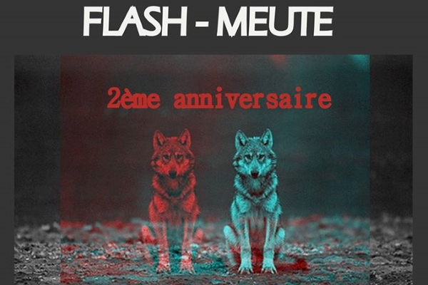 flash-meute-point-de-lecture-algérie