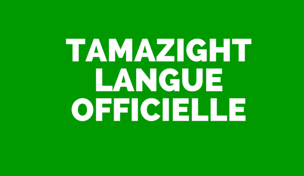 Tamazight-langue-offiielle-algérie
